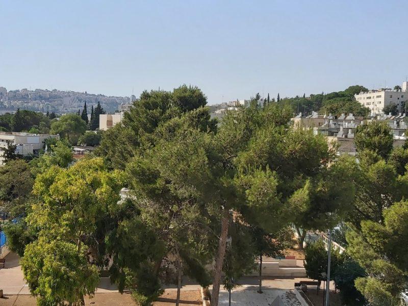 the view (Personnalisé)